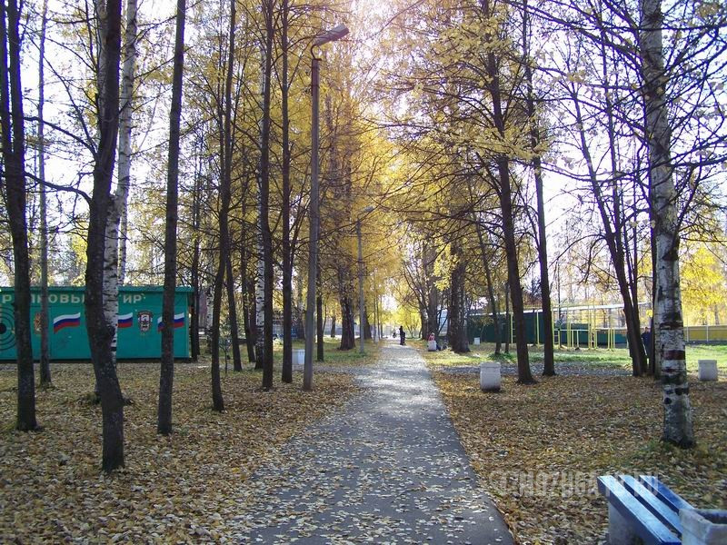 Осень в городском парке